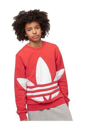ADIDAS Original Trefoil Kids sweatshirt ADIDAS | -108764232 | FS1853