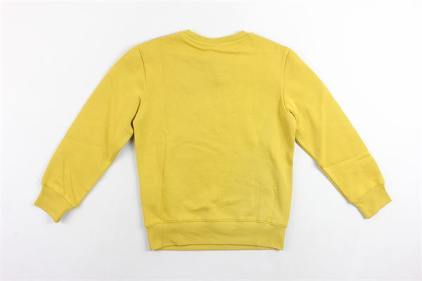 CHAMPION |  | 305035GIALLO