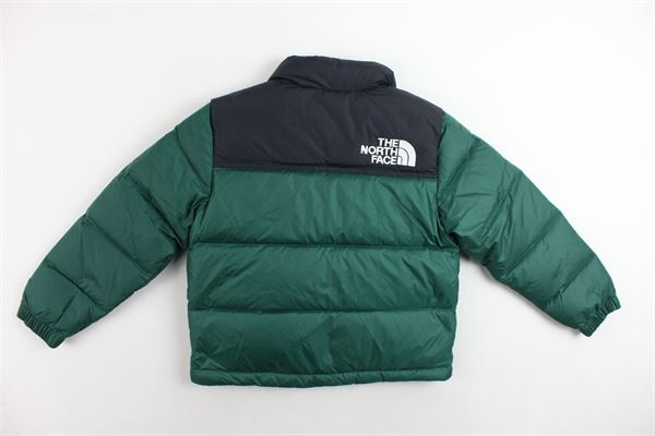 THE NORTH FACE |  | NF0A3NOJN3PVERDE