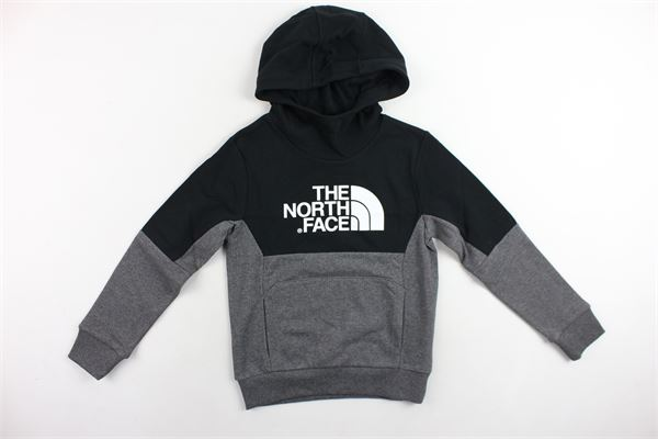THE NORTH FACE | Sweatshits | NF0A3YGFGVD1GRIGIO