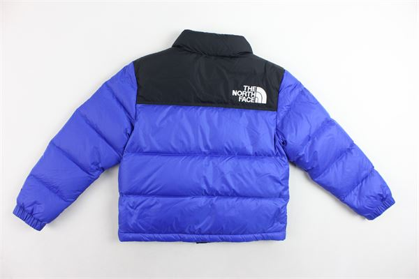 THE NORTH FACE |  | NFA03NOJCZ6COBALTO