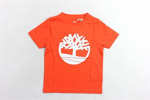 t-shirt mezza manica con stampa TIMBERLAND | T-shirts | T25N61ARANCIO
