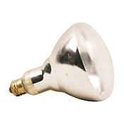 FMP 253-1122 Replacement Standard 250 Watt Bulb - Miscellaneous Parts