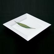 "Culinaire 12"" Square Ceramic Plate - Dinner Plates"