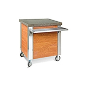Dinex 6-Well Hot Food Counter - Portable Steam Tables