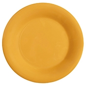 "G.E.T. 7.5"" Wide Rim Plates - Dinner Plates"