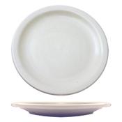 """ITI Brighton Plate - 9"""" - Dinner Plates"""