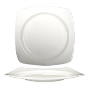 ITI Isi Plate with Well - Dinner Plates