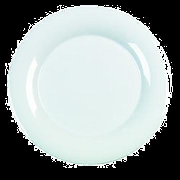 "Carlisle 12"" Wide Rim Dinner Plates"