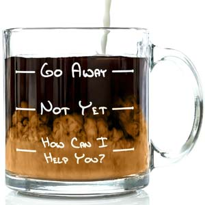 Go Away Funny Glass Coffee Mug 13 oz