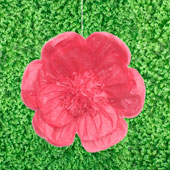 "20"" TISSUE SCALLOP FLOWERS-PC (Fuchsia)"