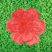"""20"""" TISSUE SCALLOP FLOWERS-PC (Red)"""