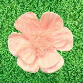 "20"" TISSUE SCALLOP FLOWERS-PC (Peach)"