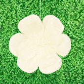 """20"""" TISSUE SCALLOP FLOWERS-PC (Ivory)"""