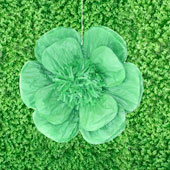 """20"""" TISSUE SCALLOP FLOWERS-PC (Mint Green)"""