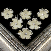 "1 3/4"" COSMOS FLOWER HAIR PINS W/RHINESTONE EDGE-6 PCS (Ivory)"