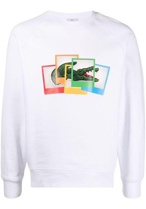 Printed sweatshirt man LACOSTE | Sweatshirts | SH2183001