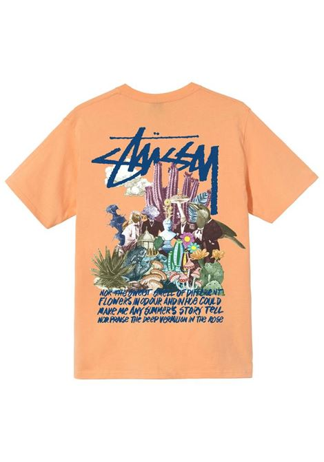 PSYCHEDELIC T-SHIRT STUSSY | T-shirts | 1904663PEACH