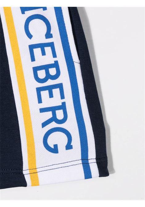 ICEBERG | Bermuda | BFICE1106B850