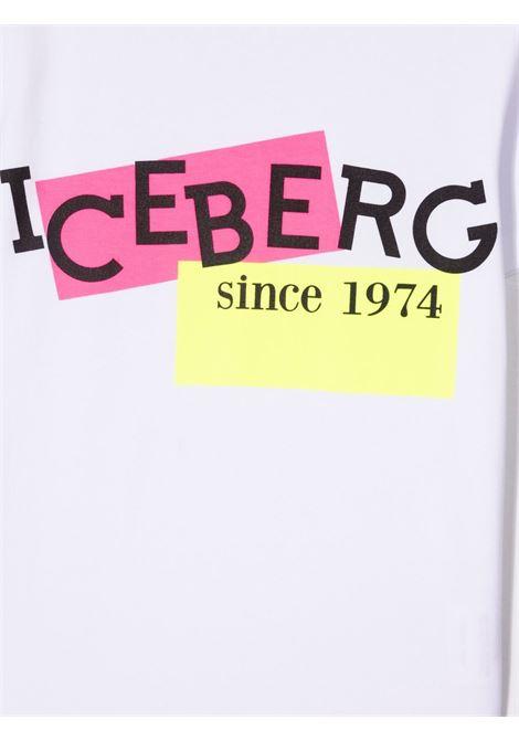 ICEBERG |  | TSICE1174100