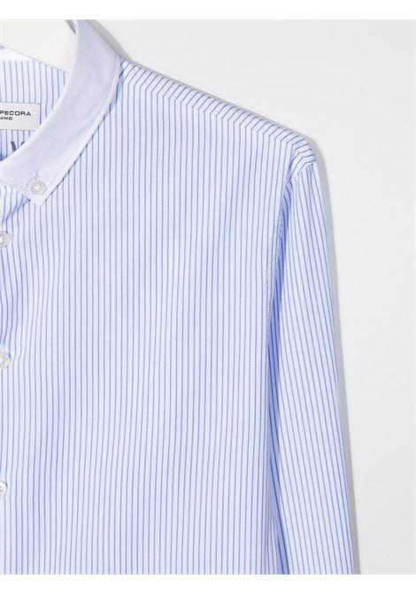 Paolo pecora | Shirt | PP2699B/AT