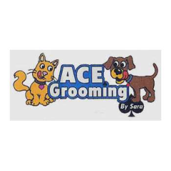 Ace grooming by sara coupons in englewood pet groomers localsaver sign up for coupons solutioingenieria Choice Image