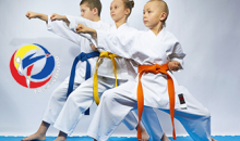 Tri-Cities Black Belt Taekwondo-$5 Special for 4 Classes of Taekwondo Training - a $150 Value!
