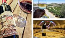 Oak Mountain Winery-2-for-1 Wine Tasting at Oak Mountain Winery!