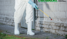 Colonial Lawn & Garden-Exterior Perimeter Pest Control Spraying by Colonial Lawn & Garden, a $88 value for ONLY $39!