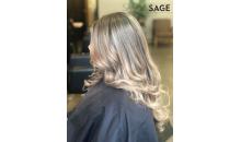 Salon Sage-$40 Gift Certificate at Salon Sage for Only $20!