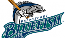 Bridgeport Bluefish-Bridgeport Bluefish Family Four Pack of Tickets for Box Seats!