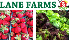 Lane Farms-$12 for $25 at Lane Farms