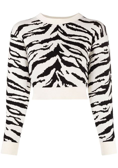 Zebra jumper 