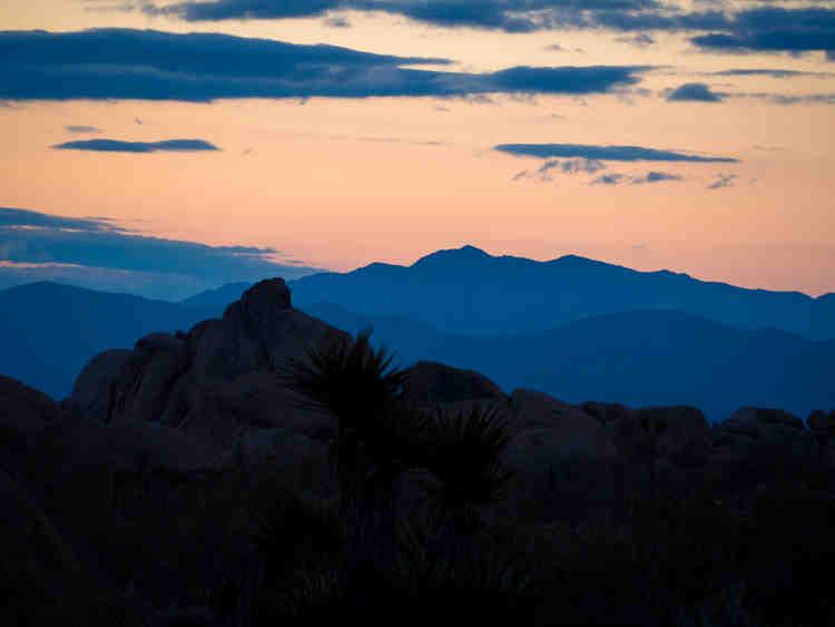 Sunrise at Joshua Tree