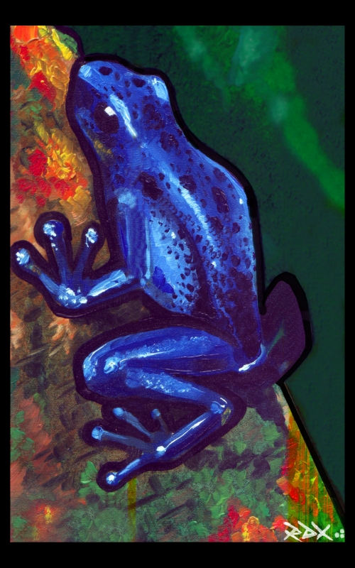 dart frog oil on canvas
