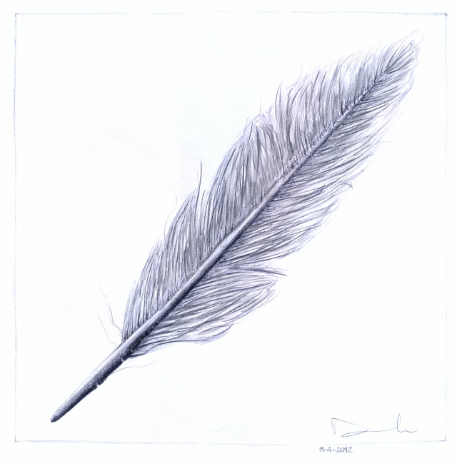 Line Drawing Feather : Post