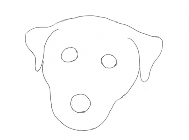 B08 Dog's Head Shapes
