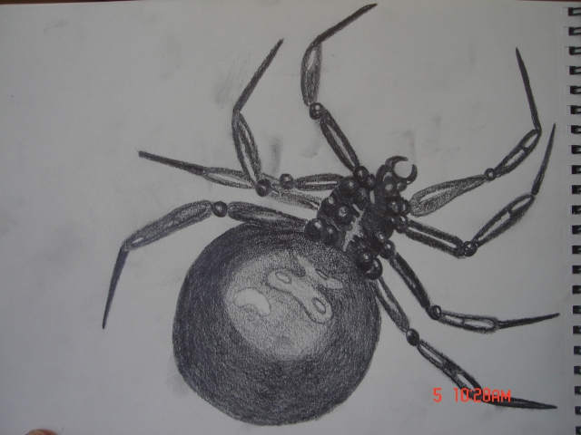 black widow drawing 2011 002