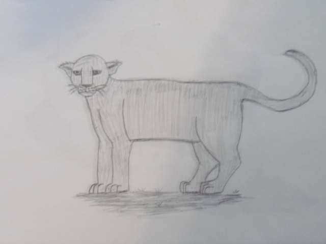 quick panther sketch