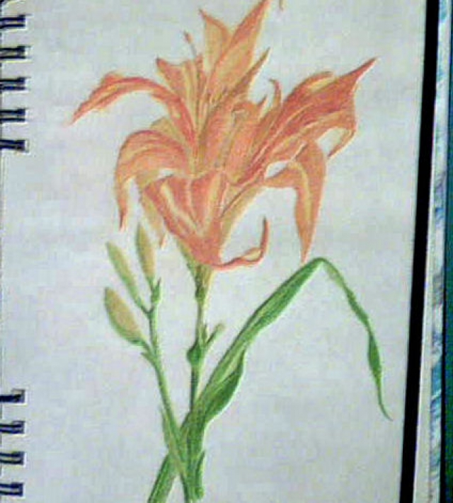 Water Color Pencil Flower_2