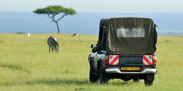 Great Safaris logo