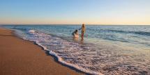 Stay on Sanibel Island & Captiva - Beachfront