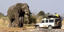 9-Day South African Safari w/ Air & Tours