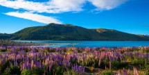 R/T AIrfare to New Zealand - 1, 2 or 3 Cities
