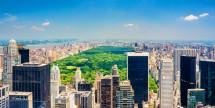Savings on Top New York City Hotels