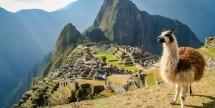 14-Day Lima to San Diego Cruise - Oceania