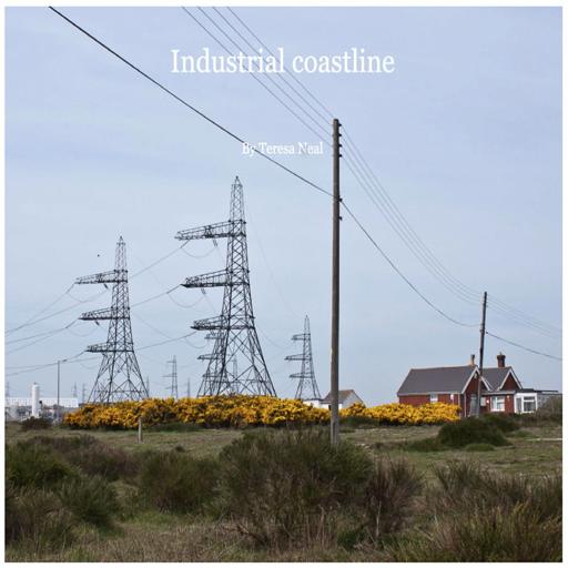 Industrial Coastline -Teresa Neal