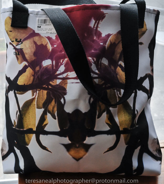 Red Spring Tote