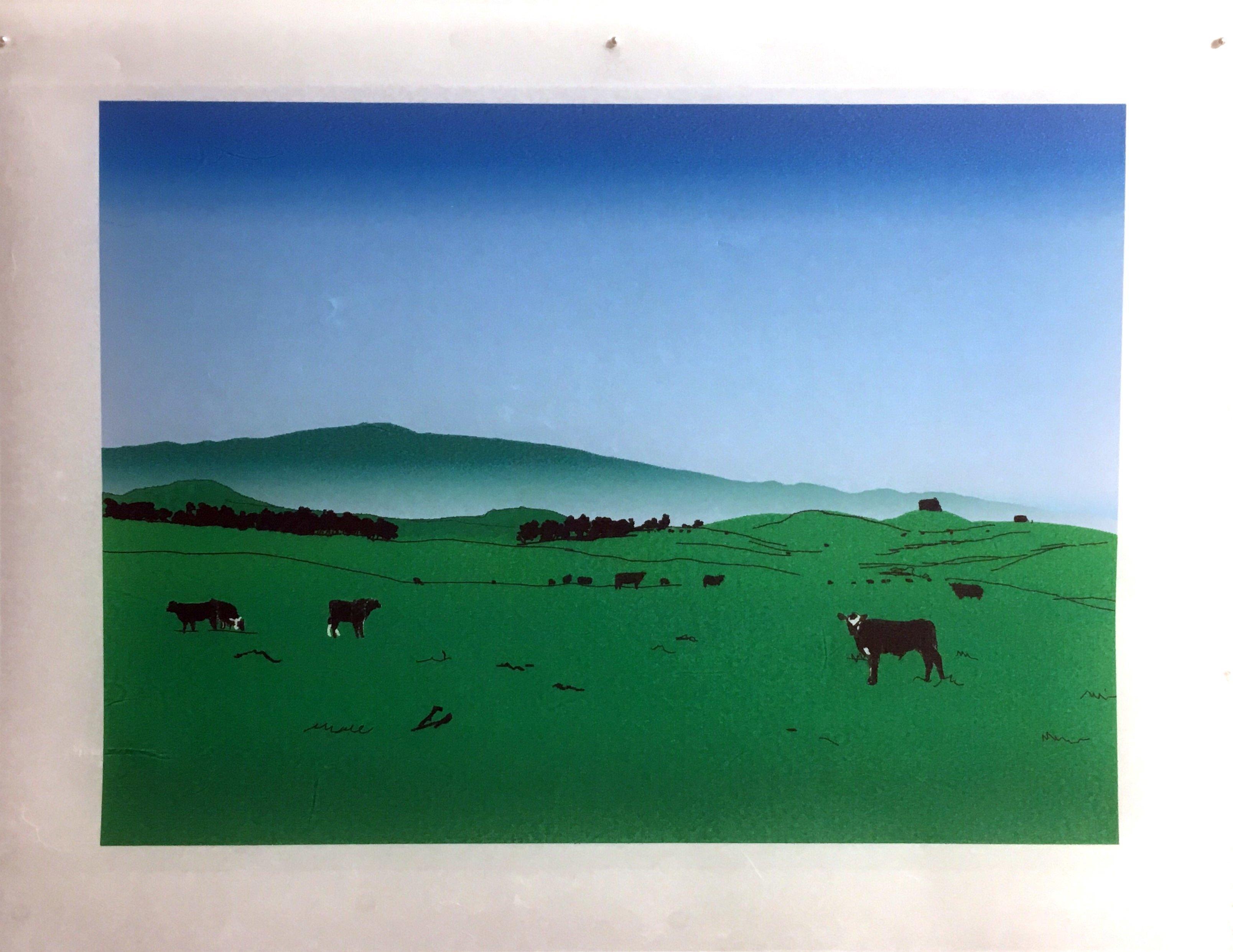 Waimea Ranch MK0020