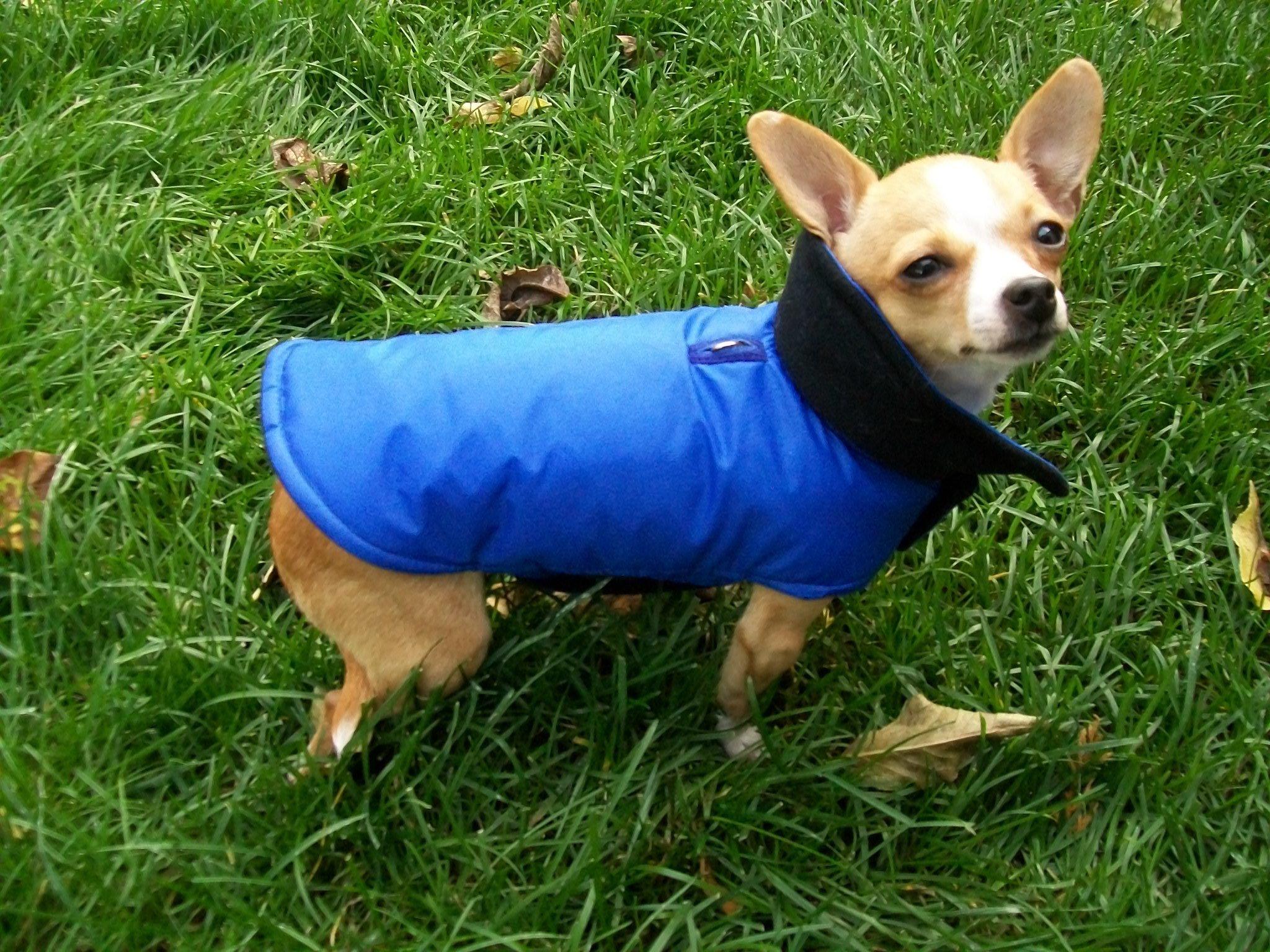 Manteaux imperméables pour chiens de petites races 00004